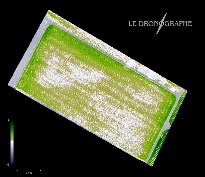 le dronographe photo drone geneve vaud NDVI Photogrammetrie